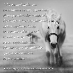 comunicacion con los animales