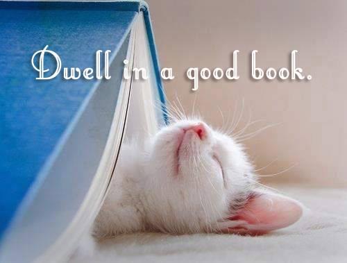 book dwelling