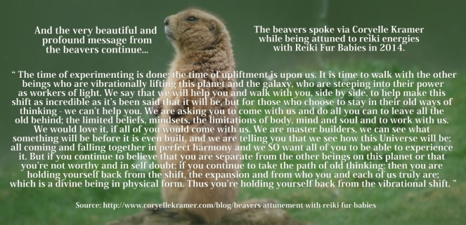 beavers message part II