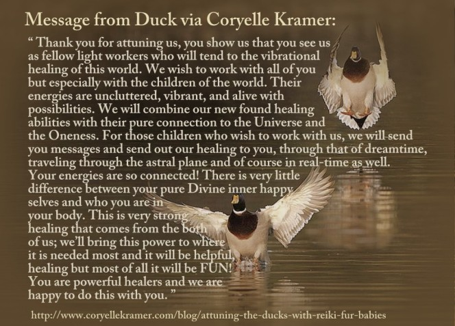 duck message and attunement via Coryelle Kramer