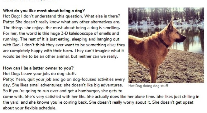 animal communication article Utah Salt Lake City