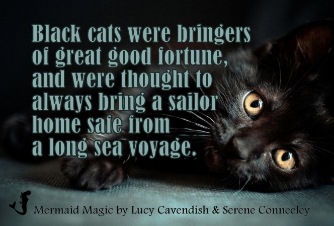 black cat good luck quote