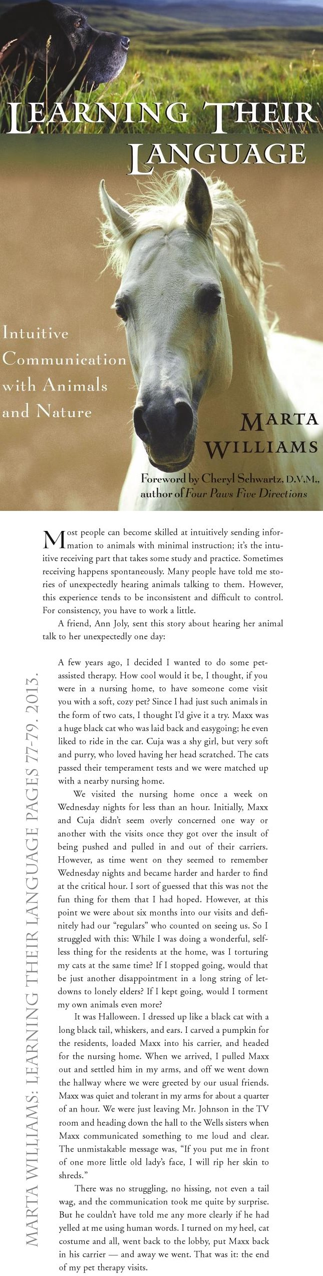 book excerpt sudden therapy cat communication