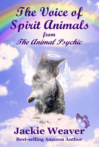 Jackie Weaver Spirit Animals Cover 2014