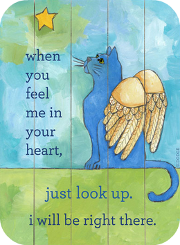 cat-angel