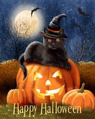 halloween from a cat