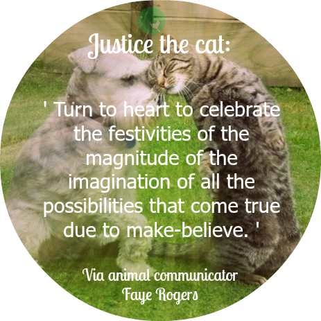 cat quote via faye