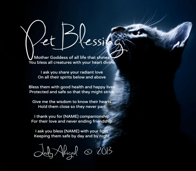 pet blessing by lady abigail