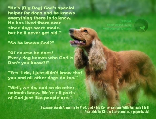 big dog and god conversation animal communication