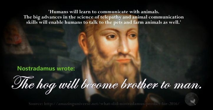 Nostradamus says
