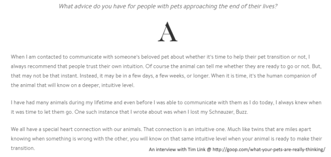 pet-psychic-interview